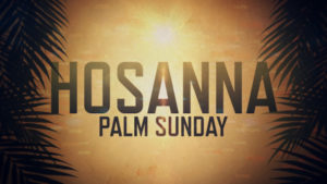 Sunday Sermon Palm Sunday 1