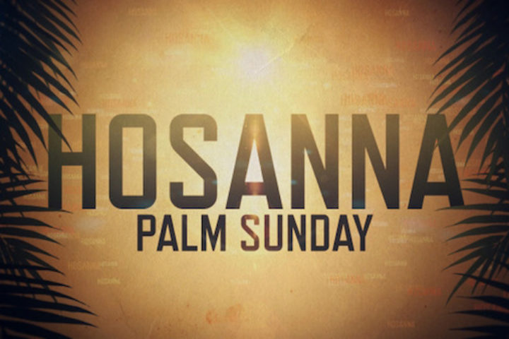 Sunday Sermon Palm Sunday 4