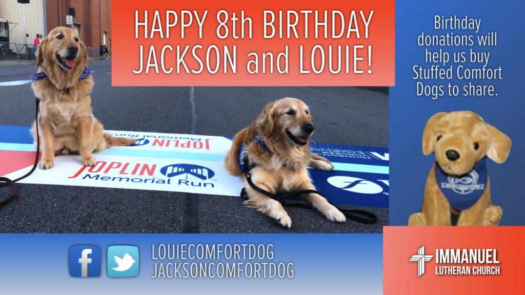 Happy 8th Birthday Comfort Dogs 1