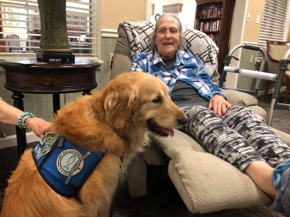 In Memory of Louie Comfort Dog 2