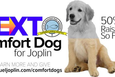 Generous Support For Joplin's Next Comfort Dog 5