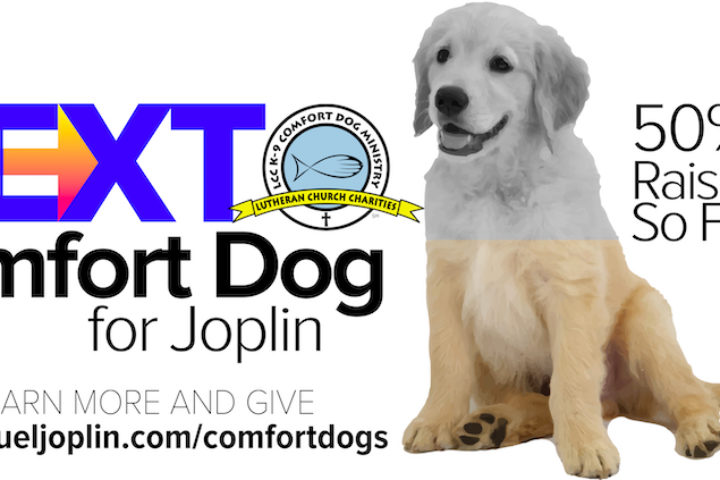 Generous Support For Joplin's Next Comfort Dog 5