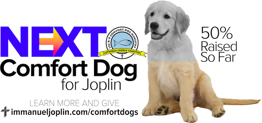 Generous Support For Joplin's Next Comfort Dog 1