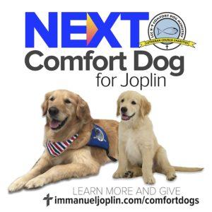 Comfort Dogs 2