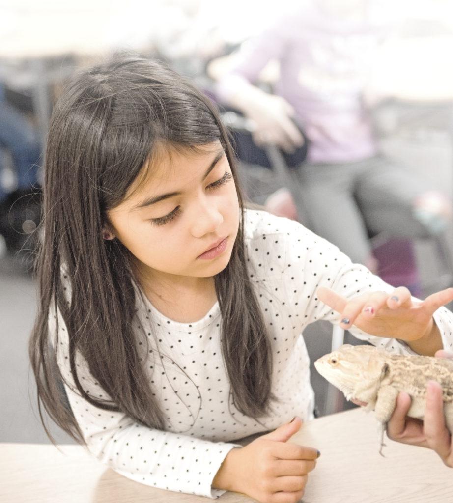 national lutheran schools week. little girl petting a lizard. science classroom. 2020.