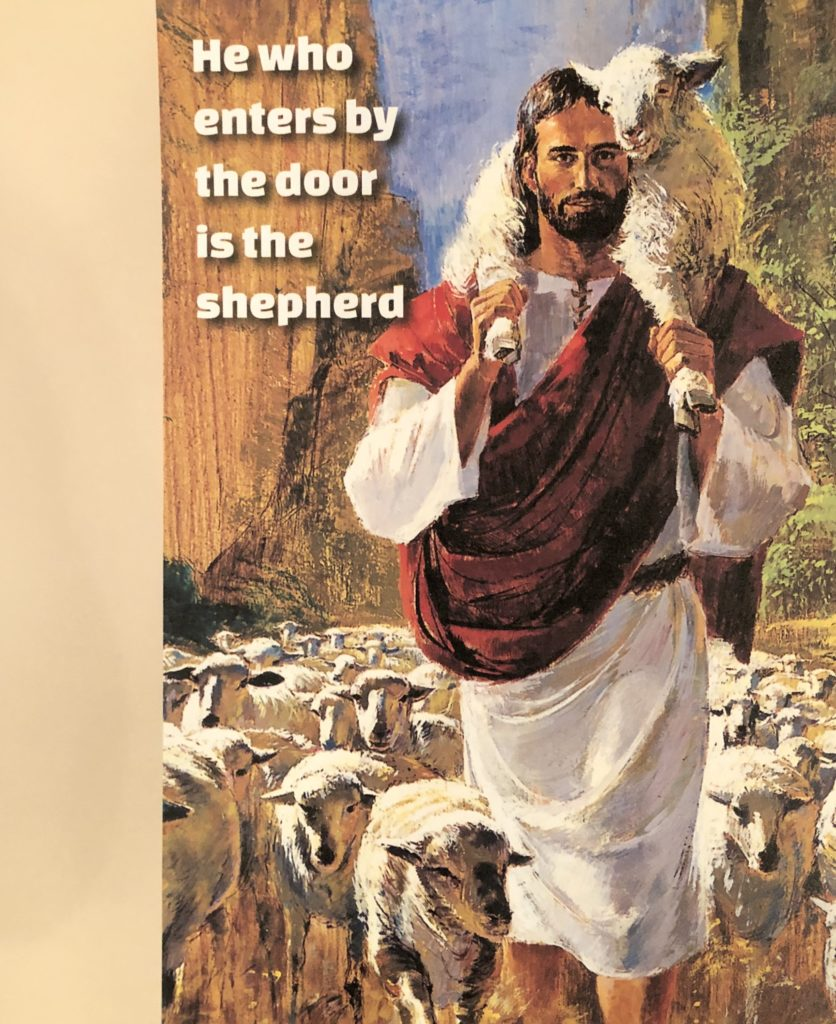 Jesus, Our Good Shepherd. Sought for Salvation and for Service. Sermon by Rev. Gregory Mech. Immanuel Lutheran Church LCMS. Joplin, Missouri.