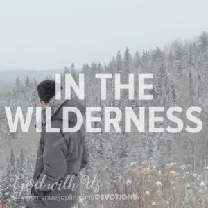 In The Wilderness. God With Us December 18 Advent Devotion. Immanuel Lutheran Church LCMS. Joplin Missouri.