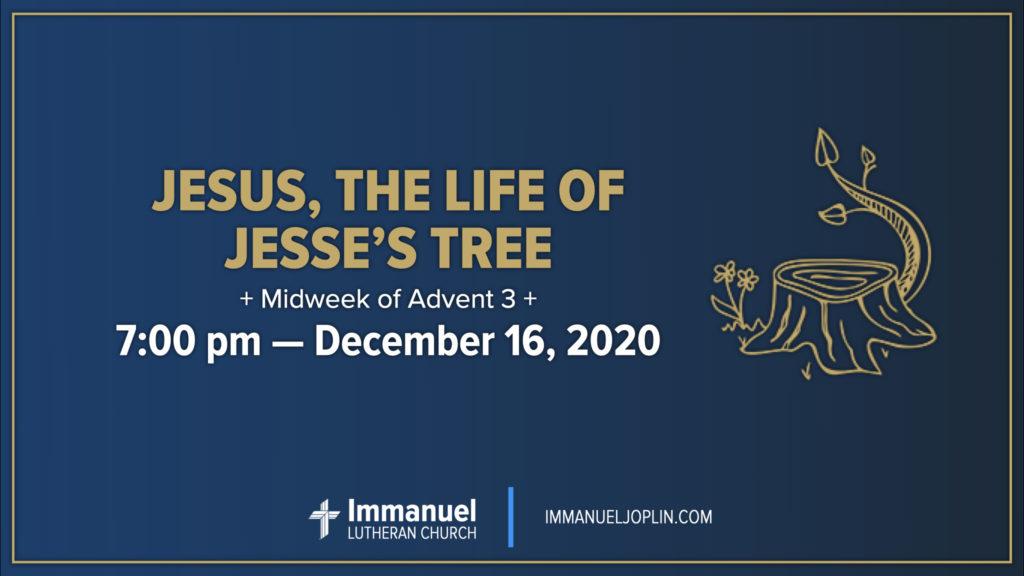 Jesus the Life of Jesse's Tree. Midweek of Advent 3. Immanuel Lutheran Church LCMS. Joplin Missouri. Jesse Tree.
